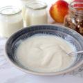 veganer Joghurt vegan yoghurt homemade